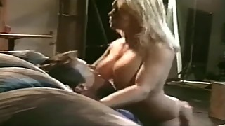 Big Tits Box DVD Part 28
