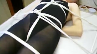 Black Leo tied to a table